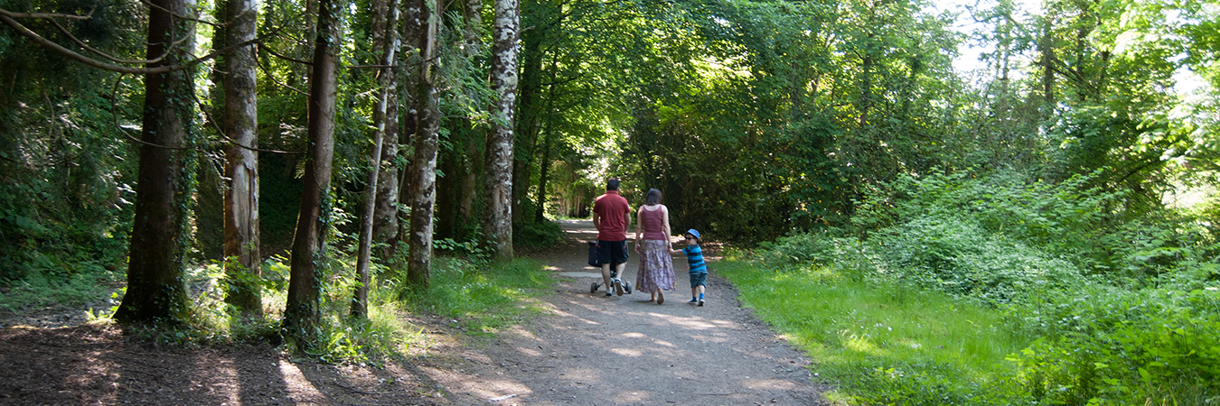 Lough  Key   Forest   &   Activity   Park